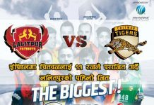 lalitpur-win-against-chitwan-in-epl-cricket-league